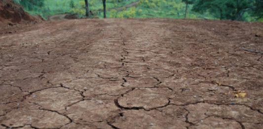 Falta de chuva prejudica produtores catarinenses, especialmente no Oeste